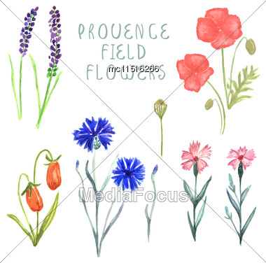 Watercolor Floral Box Creator. Set Of Hand Drawn Wood Box, Plants, Berries And Flowers For Design Various Combinations And Posies Stock Photo