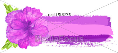 Watercolor Painted Vector Hibiscus. Tropical Flower. Vector Banner With Flower Stock Photo