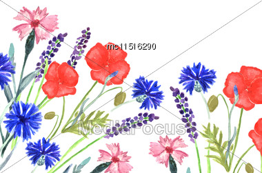 Watercolor Painted Wedding Invitation. Cornflower, Lavender, Sweet Pea And Poppy Flowers Pattern Stock Photo