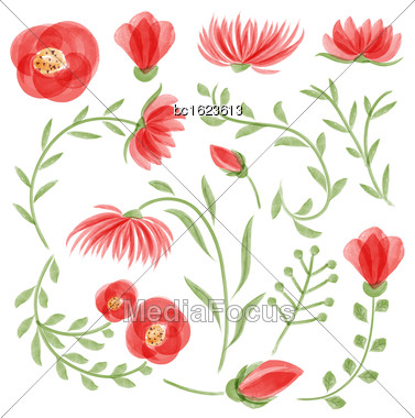 Watercolor Vector Floral Set. Colorful Floral Collection With Leaves And Flowers, Drawing Watercolor. Spring Or Summer Design For Invitation, Wedding Or Greeting Cards Stock Photo