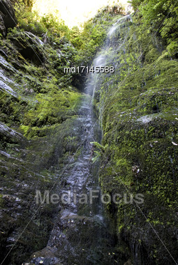 Waterfall Picton New Zealand Lush Rain Forest Stock Photo
