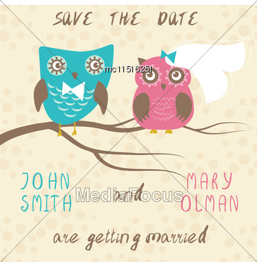 Wedding Card With Cute Owls Couple Stock Photo