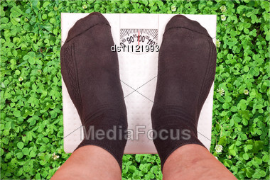 Weighing Scales On Green Grass Stock Photo