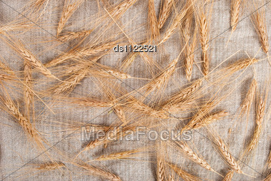 Wheat Ears On Burlap Background Stock Photo