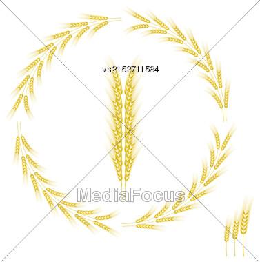Wheat Icon Isolated On White Background. Wheat Frame Stock Photo