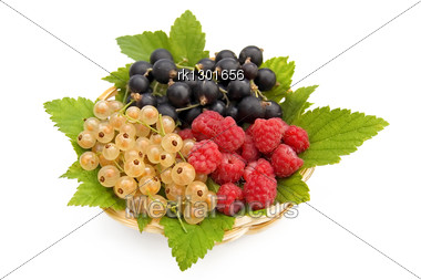 White And Black Currant, Red Raspberry, Currant, Green Leaves In A Wicker Plate Isolated Stock Photo