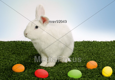 White Rabbit Sitting Next To Color Easter Eggs Stock Photo