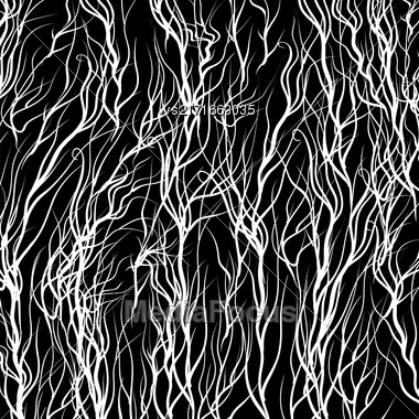 White Trees On Black Background. Natural Pattern Stock Photo