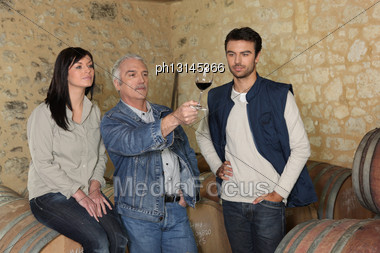 Winemakers Examining A Glass Of Wine Stock Photo