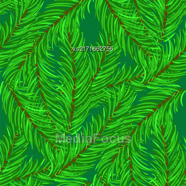 Winter Fir Green Branches Seamless Pattern. Christmas Background Stock Photo