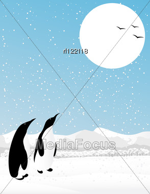 Winter Scene With Two Penguins Watching Flying Birds. Stock Photo