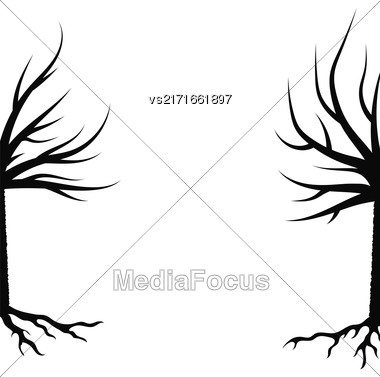 Winter Trees Silhouettes Isolated On White Background Stock Photo
