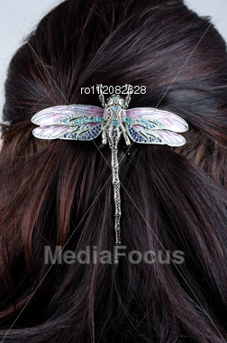 Woman Coiffure With Dragonfly Hairpin Closeup Stock Photo