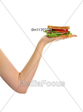Woman's Hand Holding A Sandwich, Isolated On White Stock Photo
