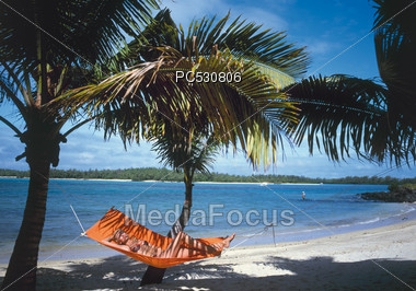 Woman In Hammock, Palm Beach, Florida Stock Photo