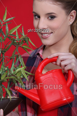 Woman Tending To A Plant Stock Photo