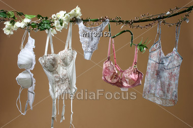 Womens Underclothing And Accessories On Beige Background Stock Photo