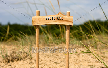 Wooden Pointer Standing In Forest In The Grass With Blank Background For Text Stock Photo