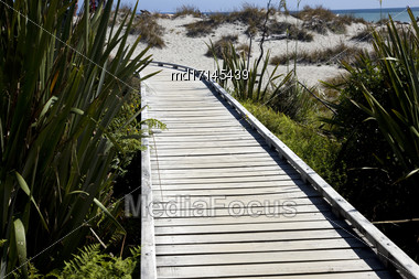 Wooden Walkway New Zeland South Island West Coast Stock Photo