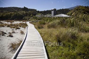 Wooden Walkway New Zeland South Island West Coast Stock Photo