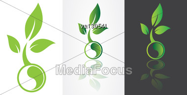 Ying Yang Harmony Symbolism With Green Leaf Vector Image. Stock Photo