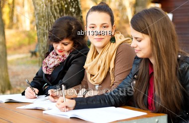 Young Confident University Students Learning For Their Exams Stock Photo