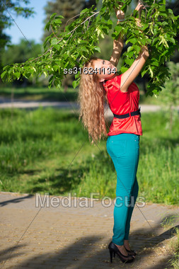 Young Smiling Blond Woman Touching Branches Of The Tree Stock Photo