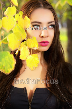 Young Thoughtful Brunette Posing Behind Yellow Leaves Stock Photo