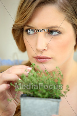 Young Woman Picking Herbs From A Pot Stock Photo