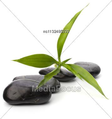 Zen Pebbles Path. Spa And Healthcare Concept Stock Photo