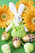 Easter Bunny Sit On Green Background With Yellow Flowers