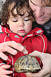 Stock Photo : Humour Stock Photography: Father And Son With A Tortoise