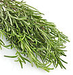 Stock Photo : Herb Pictures: Fresh Rosemary Herbs On White Background,Close Up