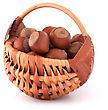 Hazelnuts In Wicker Basket Isolated On White Background stock image