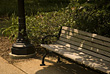 Stock Photo : Carolina North Pictures: Park Bench