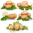 Set Of Ripe Potatoes Vegetable With Green Leafs stock photography