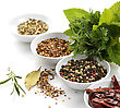 Stock Photo : Herb Pictures: Spices And Herbs