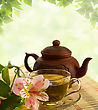 Tradition Tea Ceremony. Green Tea, Flower And Teapot - stock image