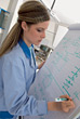 Stock Photo : Professionals Stock Image: Woman Drawing Diagram On Whiteboard